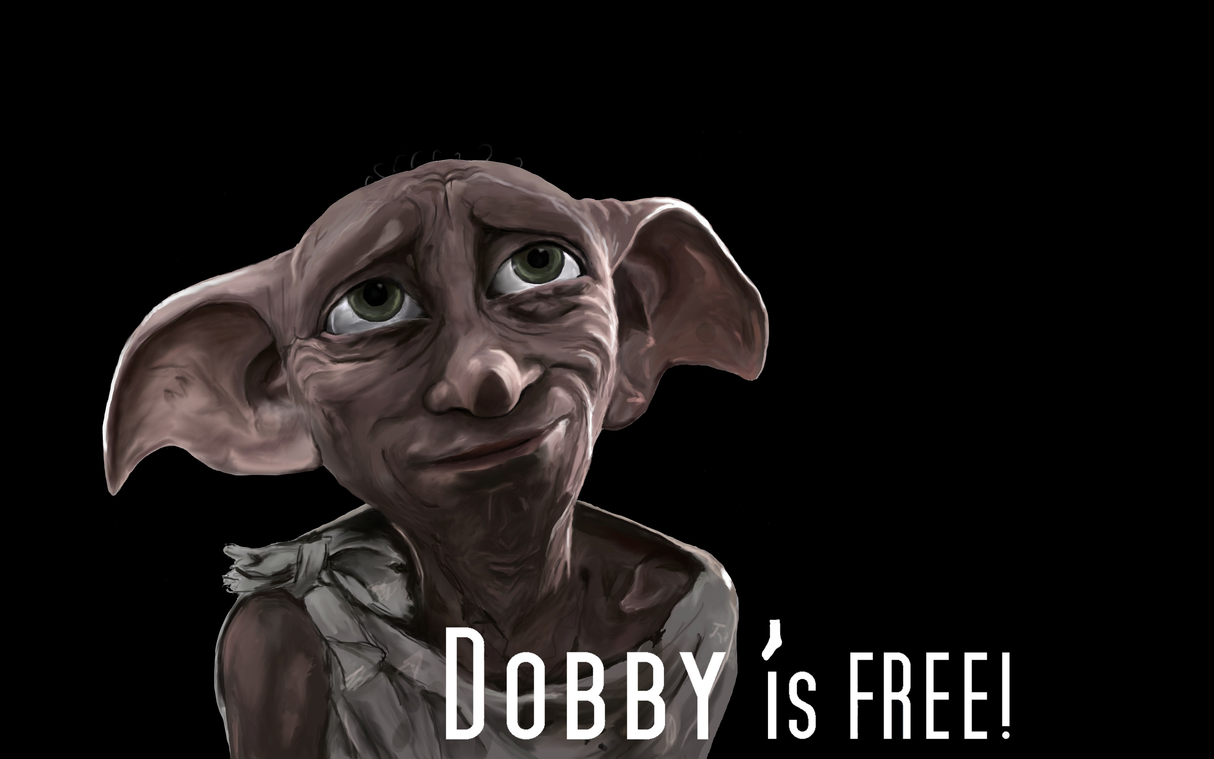 The gallery for --> Harry Potter Dobby Sock