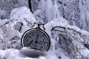 Winter Time by Gelu509