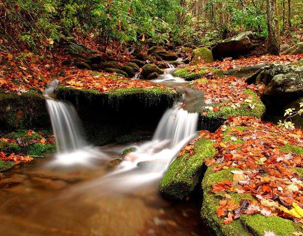 Beautiful Autumn by Enna2344