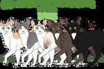 Cat Creator + Genetics! (Requires art program!)