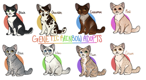 CLOSED Realistic Cat Adopts - 55 Points