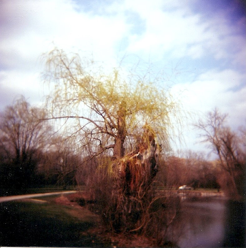 Greenfield Park by Lomo440