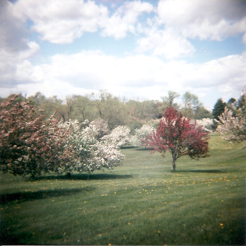 Beautiful Wisconsin 2 by Lomo440