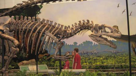 Carnegie Museum Allosaurus