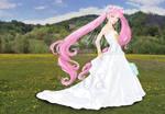 Princess Chibi-usa's Wedding
