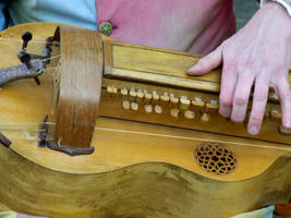 Ancient hurdy-gurdy by Tricia-Danby