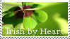 Irish by Heart Stamp by Tricia-Danby
