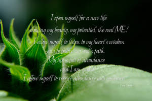 Affirmation - New Life