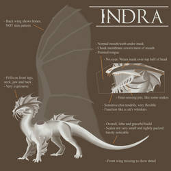 Indra Reference 2016