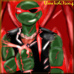 Raphael- umeko by tmntart
