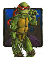 Raphael Contest Entry -7- by tmntart