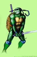 Leonardo by ryuunoane by tmntart