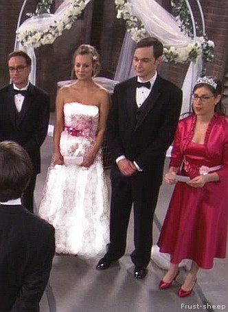 Sheldon And Amy Wedding.Sheldon And Penny Wedding By Frust Sheep On Deviantart