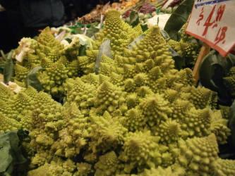 Broccoli Fractal Forest by karl-d