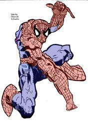 Coloured  Spider Man