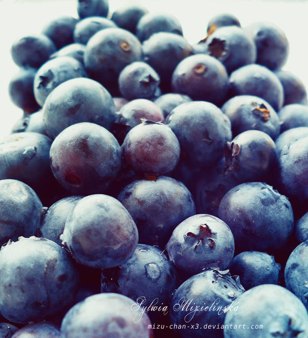 berries by Mizu-chan-x3
