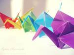 rainbow cranes