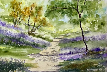 Bluebell Walk by Jennyben