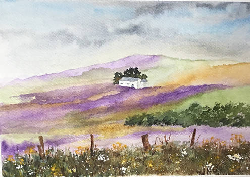 Heathland and Heather.  Watercolour.