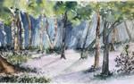 Brindley Heath Forest