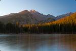 .: Longs Peak Morning Glow :.