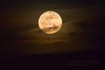.: Moody Moon :.