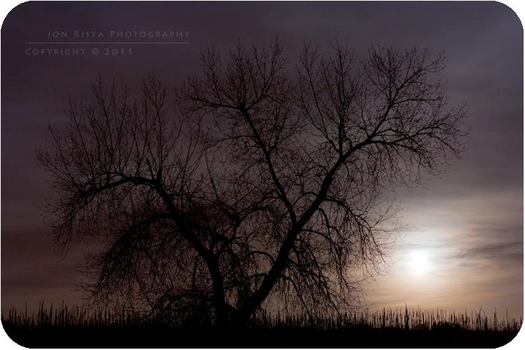 .: Silhouette in Moonlight :.
