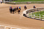 Another Day at the Races 003