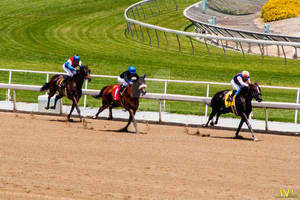 A Day at the Races 026
