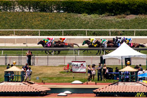 A Day at the Races 034