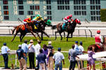 A Day at the Races 036