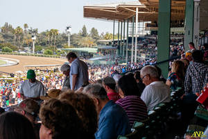 A Day at the Races 049