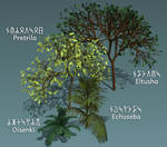 Some Kadreilian plants