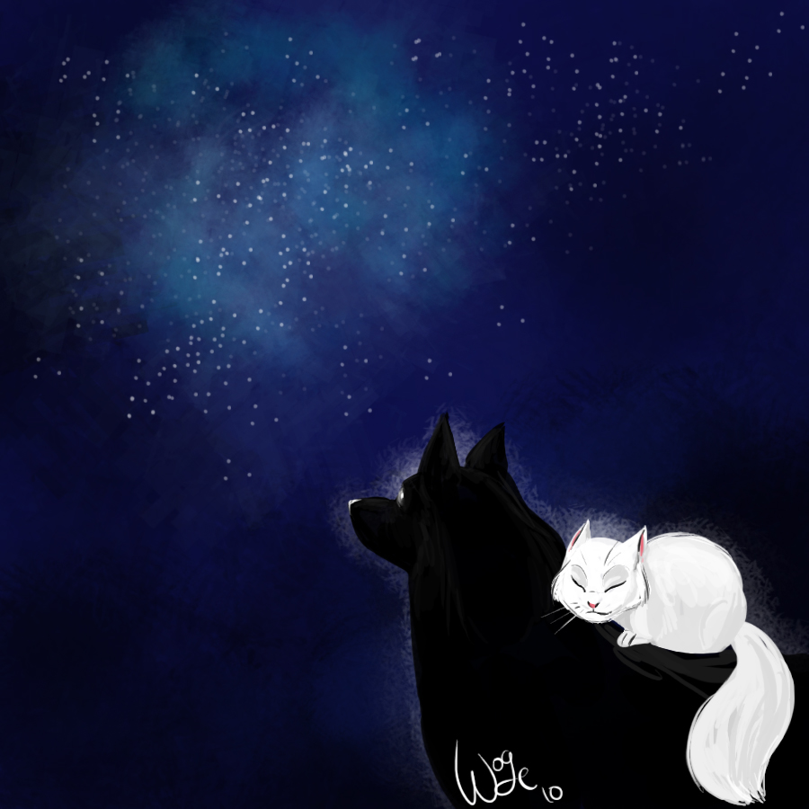 wolf_and_cat2_by_flippy111.jpg