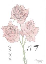 Roses by Lonirisme