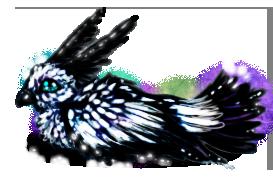 G: Paradise Bird by Snow-Body