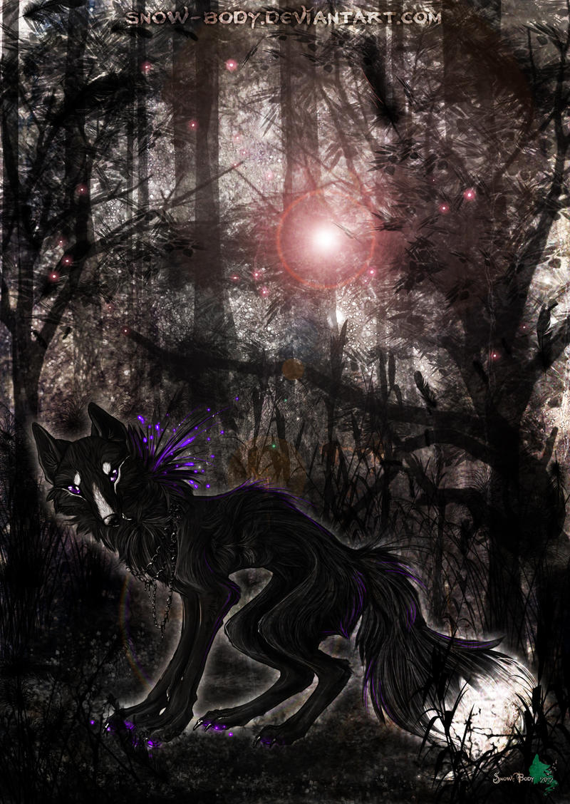 C: a Beautiful dark Forest by Snow-Body