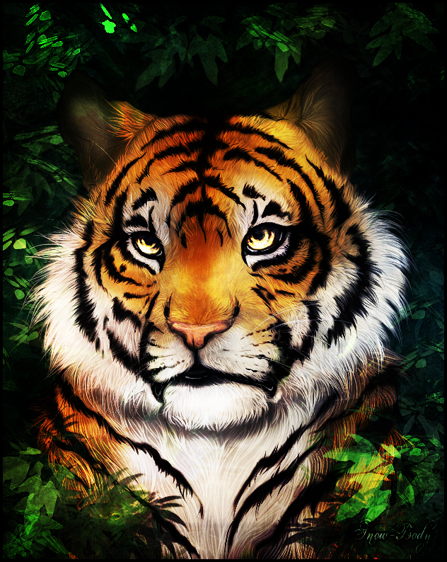 The Eye of the Tiger by Snow-Body