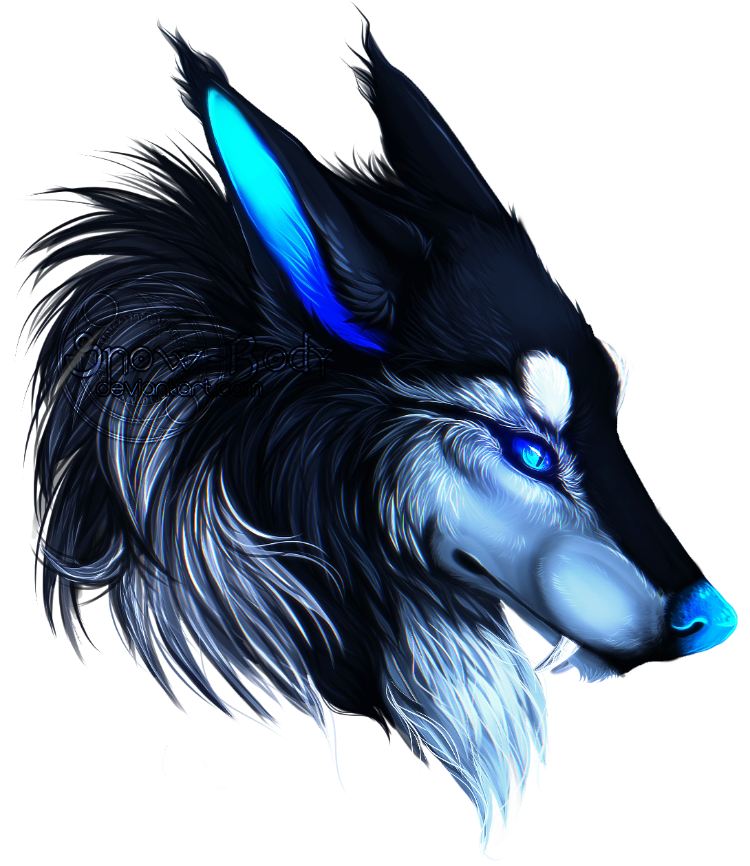 C: Saphir by Snow-Body