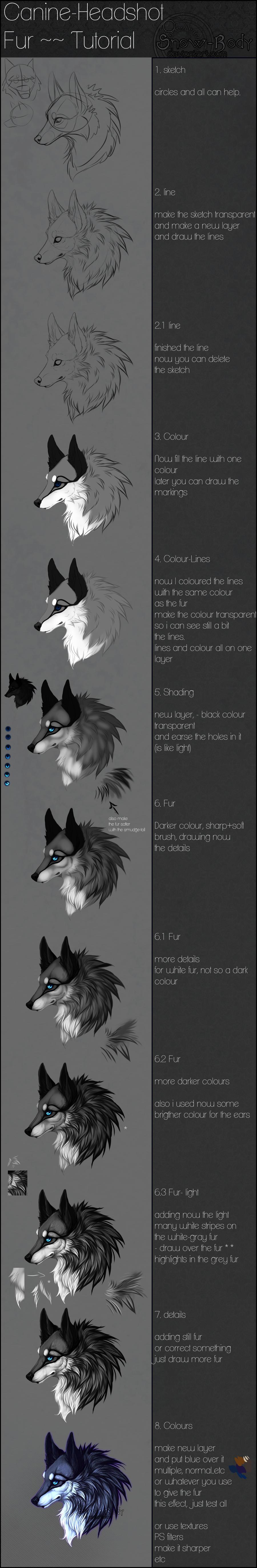 Snow-Body's: Fur-Tutorial by Snow-Body