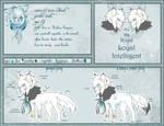 Ref Sheet: Prince Aseel