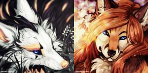 C: silent beauties