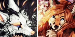 C: silent beauties by Snow-Body