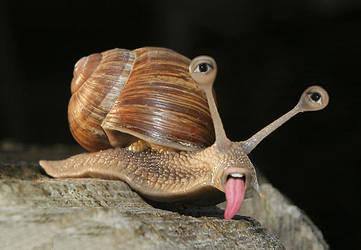 Tired Snail by Devilangelo