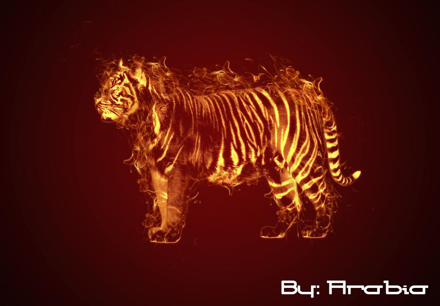 flaming tiger by araabia on deviantart. Black Bedroom Furniture Sets. Home Design Ideas