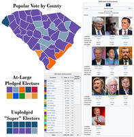 Around the Country in 80 Candidates-South Carolina