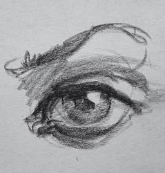 Eye n.2 by Wildweasel339
