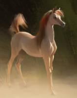 Study of a Foal