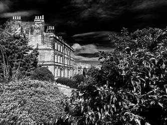From Pannett Park b+w by Lisa-Downing
