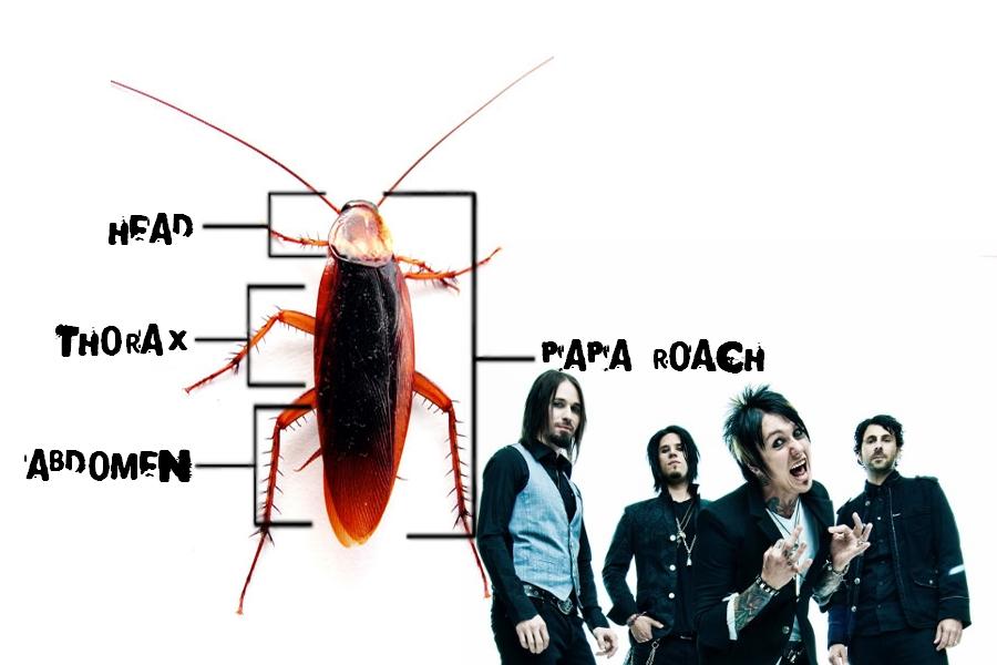 Papa Roach wallpaper by Zenfiro